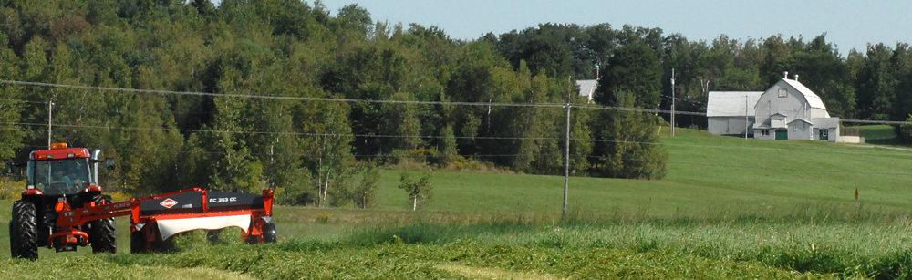 Projet de Plan de développement de la zone agricole
