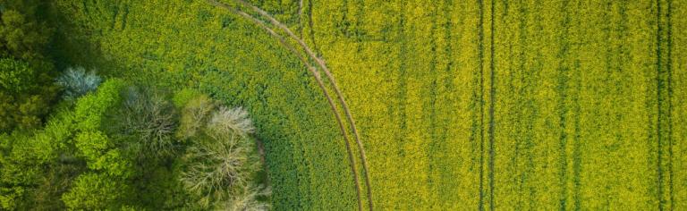 Projet de Plan de développement de la zone agricole en Haute-Yamaska : de l'ambition à l'action