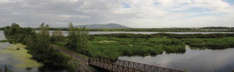 Projet collectif du bassin versant du lac Boivin – Les milieux municipal et agricole de la Haute-Yamaska prêts à passer à l'action