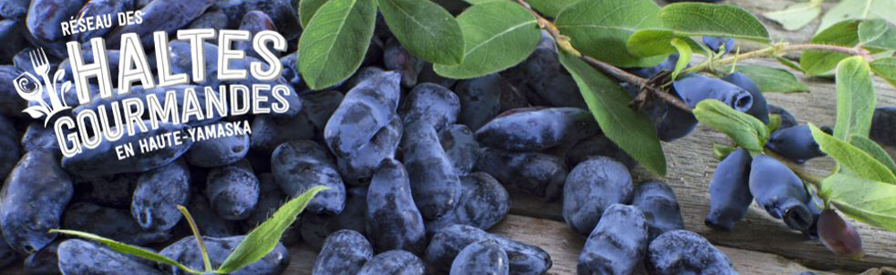 Haltes gourmandes en Haute-Yamaska : de nouvelles mesures pour soutenir les producteurs locaux