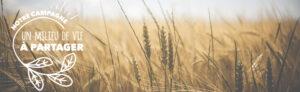 Bilan de mi-parcours de la campagne de sensibilisation pour une cohabitation harmonieuse en zone agricole en Montérégie