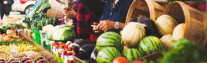 Stratégie bioalimentaire Montérégie : financement de 4 projets bioalimentaires