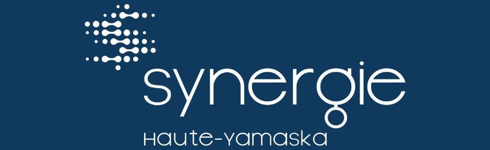 21 participants et 18 synergies potentielles lors du premier atelier de maillage de Synergie Haute-Yamaska!